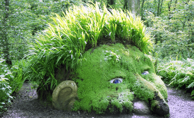 Heligan Gardens, Cornwall