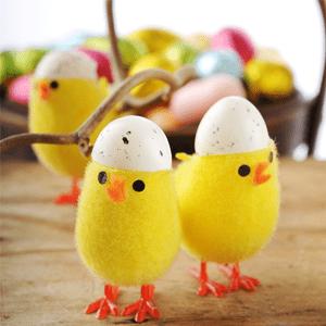 cheap-egg
