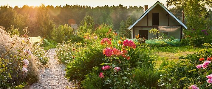 september-garden