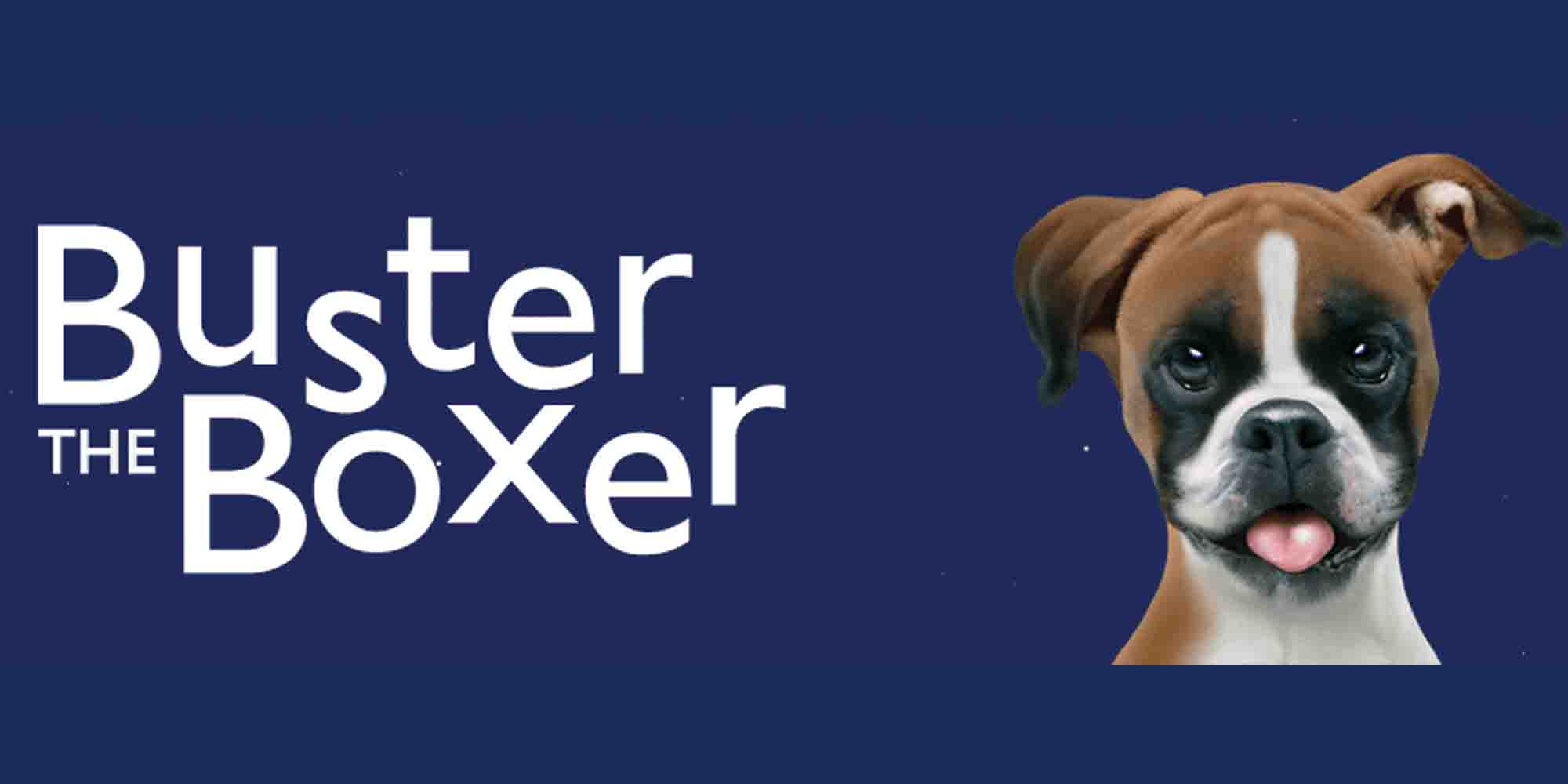 buster-the-boxer-copy