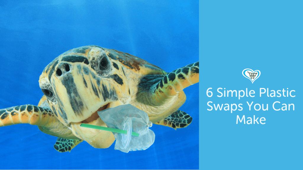 6 Simple Plastic Swaps YOU Can Make