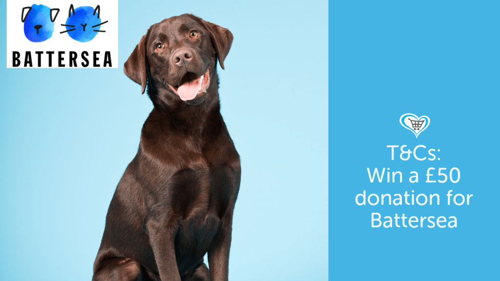 Battersea International Dog Day Competition