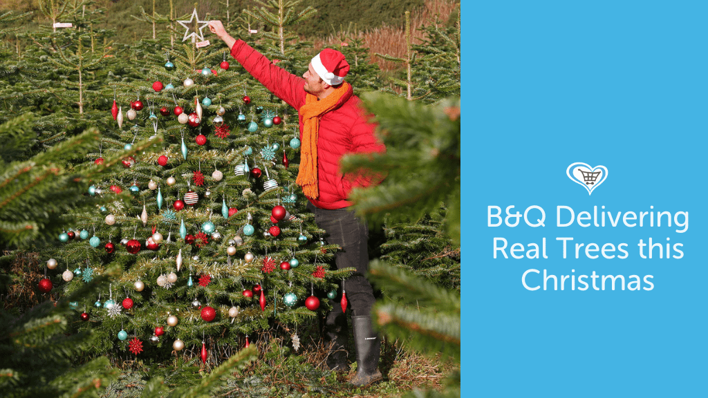 B&Q Delivering Real Trees this Christmas