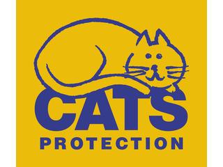 Cats Protection Taunton & Wellington