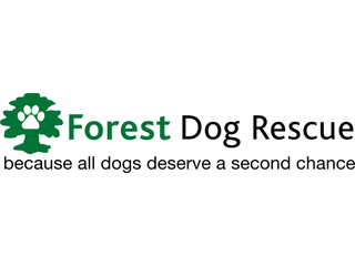 Forest Dog Rescue