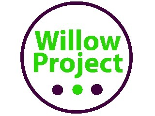 Willow Project