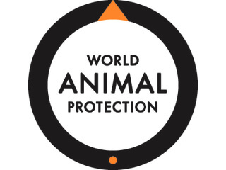 Support World Animal Protection