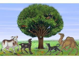 The Tree of Life for Animals