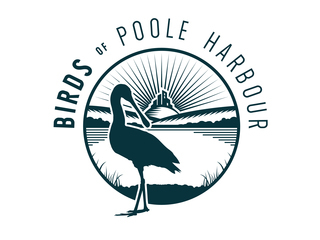 Birds Of Poole Harbour