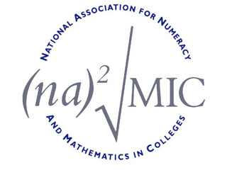 National Association For Numeracy And Mathematics In Colleges Cio