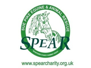 SPEAR Sue Pike Equine & Animal Rescue