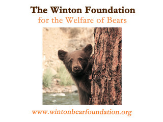 The Winton Foundation For The Welfare Of Bears SCIO (Scotland)