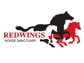 Redwings Horse Sanctuary