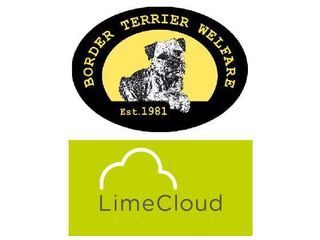 Lime Cloud Limited supporting Border Terrier Welfare