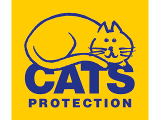Support Cats Protection