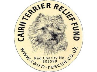 The Cairn Terrier Relief Fund