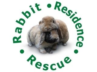 Rabbit Residence