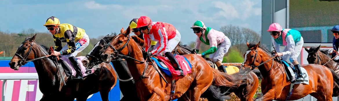 Fundraise with Kempton Park Racecourse