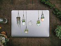 Set of 5 Illustrated Hanging Plant Laptop Stickers