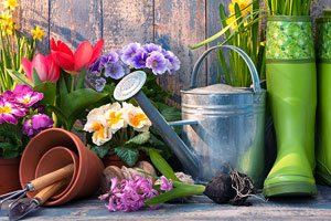 Guide to the best garden planting tools