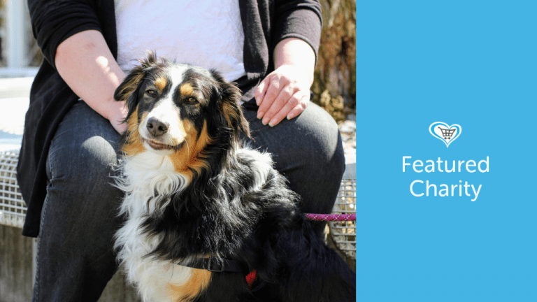Border Collie Trust GB become Featured Charity