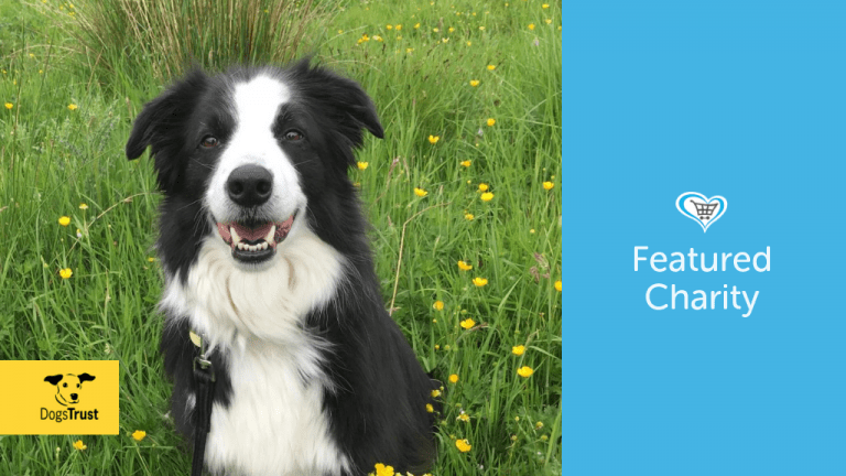 Dogs Trust Become Featured Charity