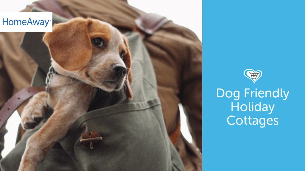 Dog Friendly Holiday Cottages With HomeAway