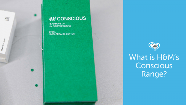 What is H&M's Conscious Range?